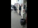 кража невесты)))
