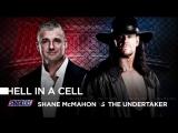Матч в адской клетке: Гробовщик vs. Шэйн МакМэн (WWЕ WrеstlеМаniа 32)
