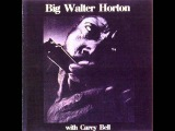 Big Walter Horton With Carey Bell - Full Album