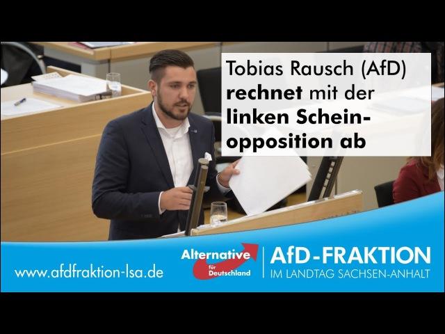 Tobias Rausch AfD rechnet mit der linken Scheinopposition ab
