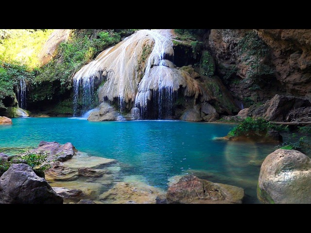 Rainforest Sounds - Waterfall Relaxing Music Singing Birds Ambience