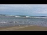 Кевин с песочной присыпкой
