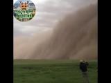 Песчаная буря в Гоби (Монголия).