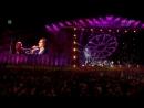 Kusturica Emir the No Smoking Orchestra Woodstock 2013 7 Bubamara