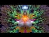 САМАДХИ (Майя - иллюзия обособленного я) часть 1