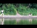 Купание на реке Угре