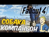 Fallout 4 Прохождение На Русском 2 — Собака-Компаньон