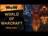 World of Warcraft (WOW): краткий обзор ММОРПГ онлайн-игры, где поиграть
