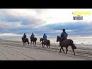 Красивые виды на БАЛТИЙСКОЕ МОРЕ, ЯНТАРНЫЙ, РОССИЯ/Beautiful views of the BALTIC SEA, AMBER, RUSSIA