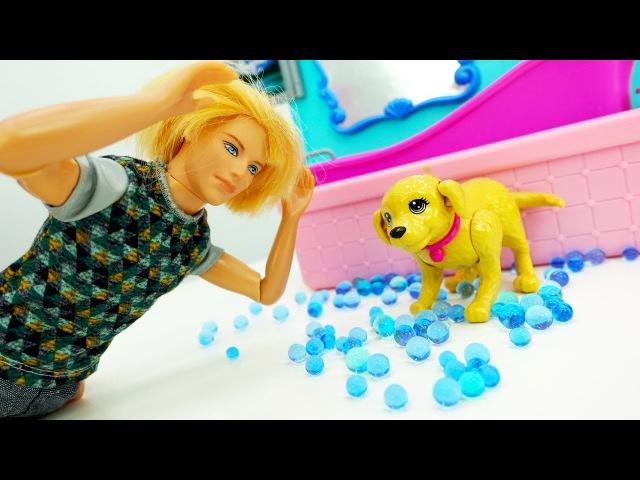 Мультики про Барби. Кен купил собаку: Собака РАЗГРОМИЛА дом Барби! Видео для дев ...