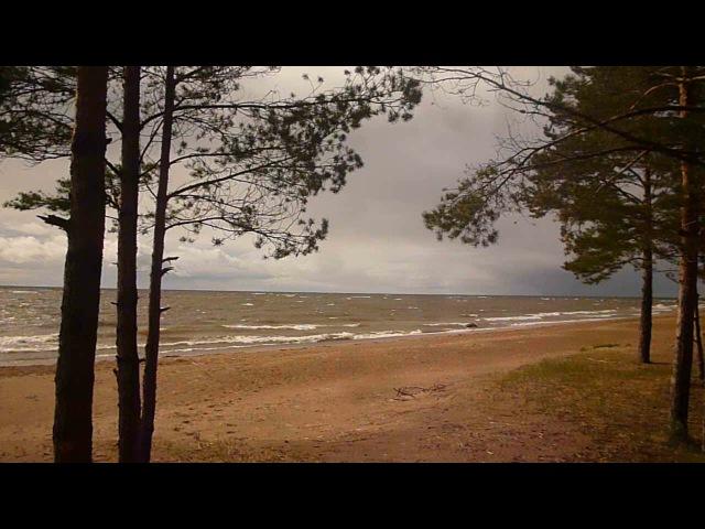 Финский залив, Б.Ижора
