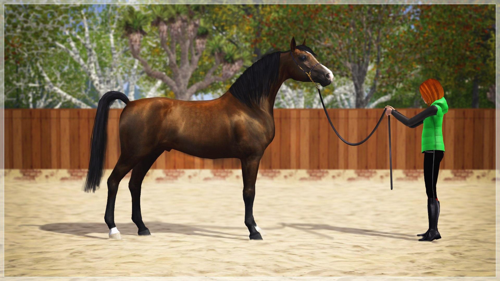Регистрация лошадей в RHF 2 - Страница 7 R4lCADaJVKs