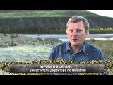 Цена Золота. ГК Янтарь, пос. Усть-Нера, республика Саха (Якутия)