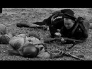 Черные Бушлаты морской десант - герои Великой Отечественной войны 1942г.