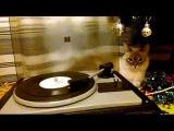 В Новый год со старой пластинкой Би Джиз