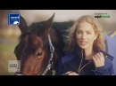 Spoga horse award Nominees Sales