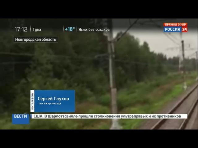 Новости на «Россия 24» • Семь поездов застряли между Москвой и Питером из-за упавшего дерева » Freewka.com - Смотреть онлайн в хорощем качестве