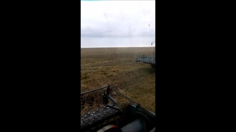 комбайн Акрос 530 мой клип))