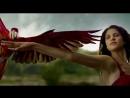 Красивое видео о природе и её прекрасных созданиях