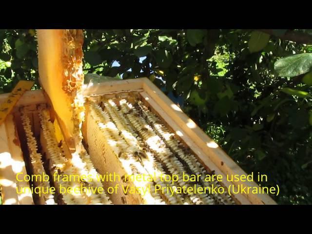 Пчеловодство Украины: Мед Качаем, Медок, и Cекреты Улья и Пчелорамок Василия При ...