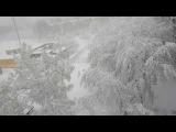Новости аномальной погоды Харьков Украина 19 04 2017 Anomalous weather news Kharkov Ukraine
