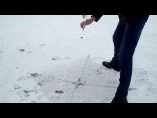 Как ставить хапугу под лед