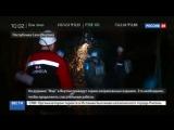 Новости на «Россия 24» • На руднике