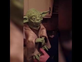 A funny joke for you, Yoda has