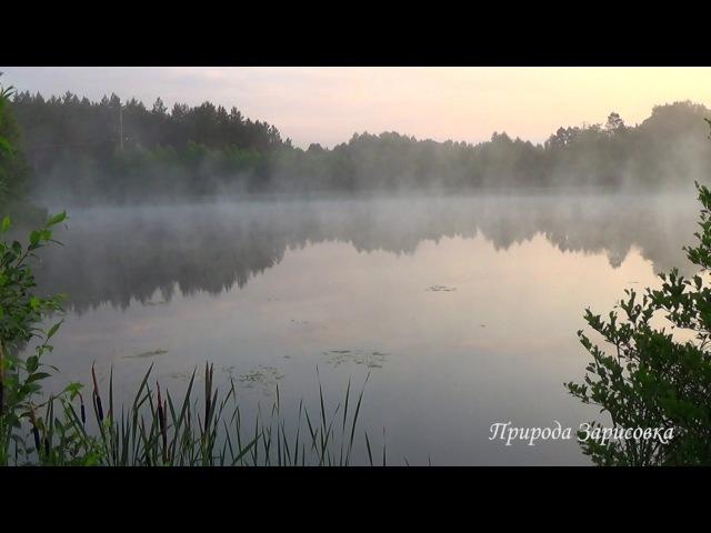 РЕЛАКС.Синий туман, Красивая природа. Звуки природы. Релакс. Медитация. Река. Рассвет. Сиреневый туман.