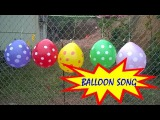 Baby Finger Family Song for Learning Colors Polka Dot Balloons with Real Babies Wet Balloons