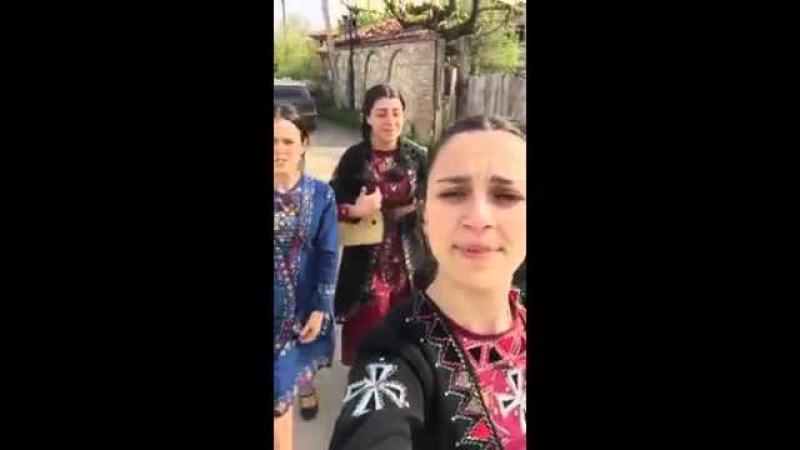 Trio Mandili Qrizantemebi