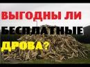 Выгодны ли бесплатные дрова Жить в деревне