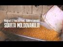 Magnat Feoctist feat. Valera Leovskii - Soarta Moldovanului (Official Video 2017)