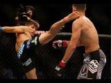 Невероятно быстрые нокауты в боях без правил. Top fast knockouts in MMA 2015