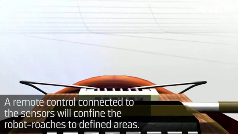 Тараканы роботы