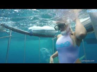 Видать акуле  не понравилось творчество молодой актрисы