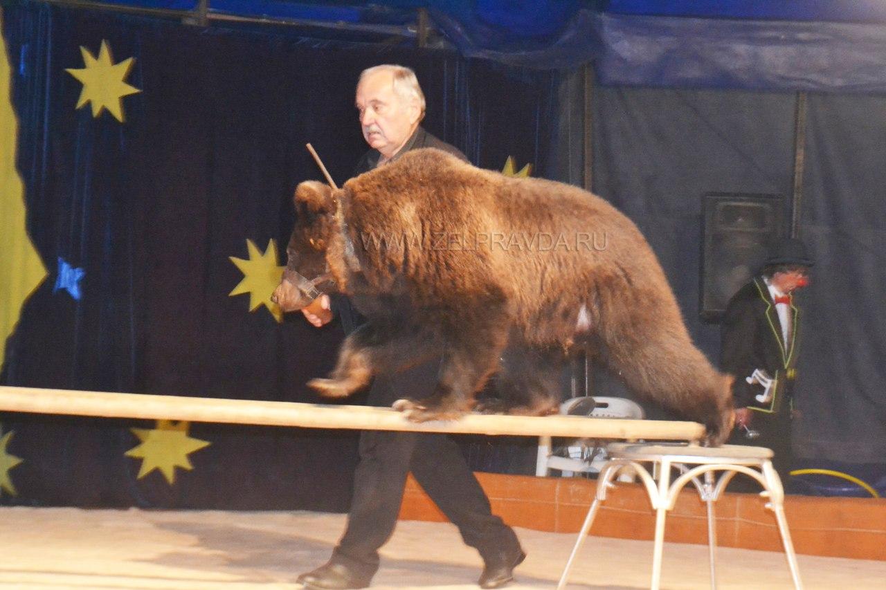 В станице Зеленчукской дал представление Московский цирк-шапито «Бочкарёв»