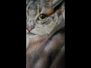 drawing cat Nalia by VictoriaKramorova