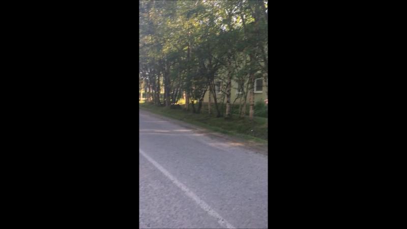 Выездная инспекция ОНФ по проекту Карта убитых дорог в Оленегорске