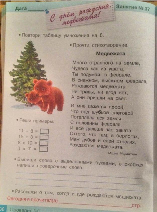 детская книга с заданиями загадками кроссвордами