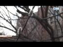 13.04.2017 Чистый, или Великий четверг: обычаи и традиции