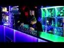 Шоу барменов в клубе Золотой Теленок