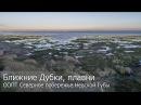 Ближние Дубки, Финский залив. Полет.