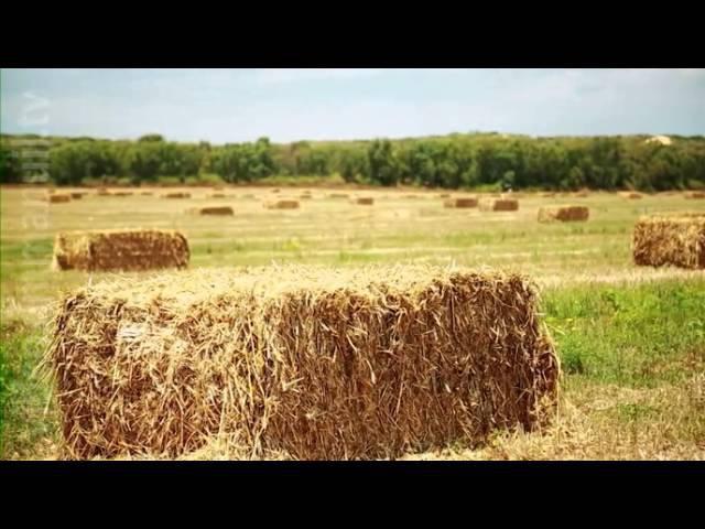 Сделано в Израиле - Сельское хозяйство (Эпизод 1)