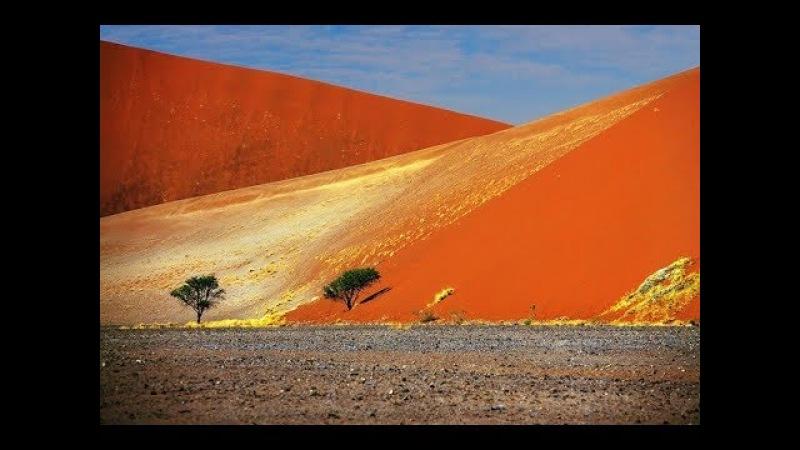 Все пустыни рукотворные. Возраст им - 300 лет.