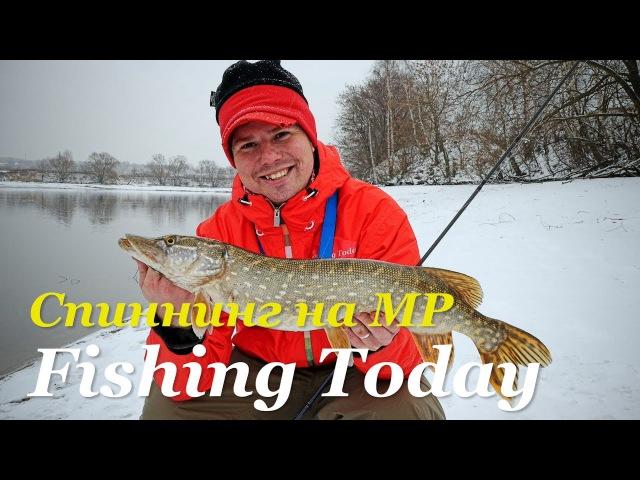 Зимний спиннинг на МР. Основы джиг-рига. Заглядываем в коробки Дениса Вихрова - Fishing Today