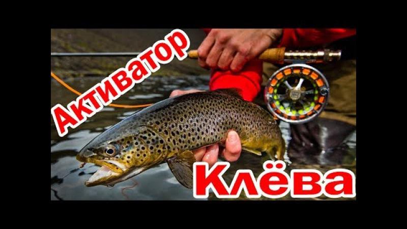 Активатор Клёва DRY BLOODER (Драй Блудер) Для Зимней и Летней Рыбалки