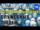 Технология выведения служебных людей (Познавательное ТВ, Илья Михнюк)