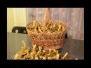 Рецепт маринованных грибов моховиков
