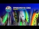 Уловистые приманки на сома. Рыбалка на реке Припять